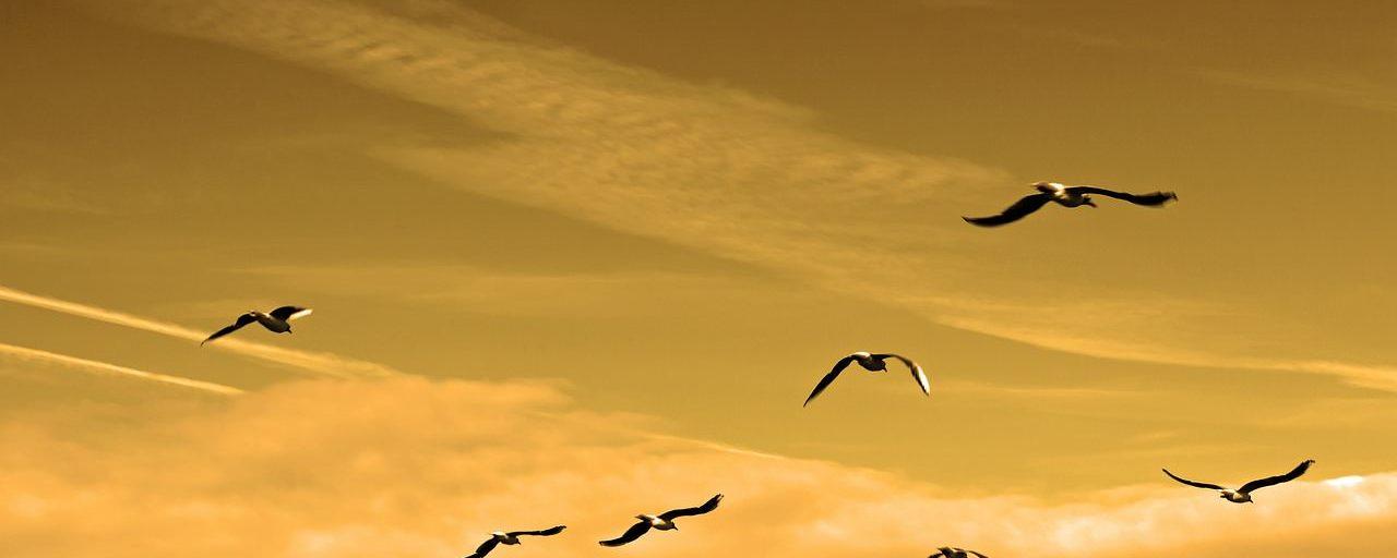 6 Ways Jesus Developed Leaders